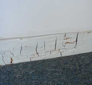 Dry Rot in skirting boards - note cubes developing